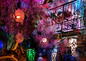 Meow Wolf Prowling
