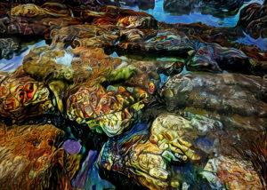 Overlooked Tide Pools